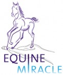 EquineMiracle_Small-124x148